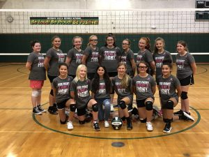 photo shows group of girls volleyball players in gym smiling